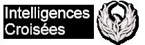 Eric Delbeccque – Intelligence économique et stratégies d'influence Logo